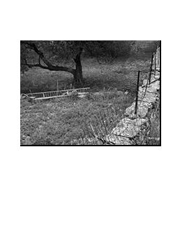 artemonas_nov29_2008_04